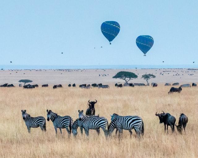 air ballooning over Maasai Mara.